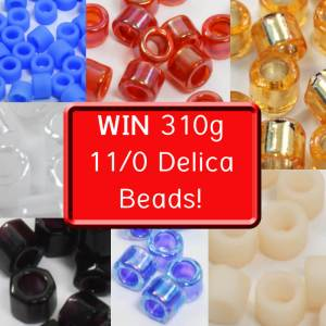 Win 310g 11/0 Delica Beads, Katie Dean, Beadflowers