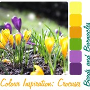 Colour Inspiration - Crocuses