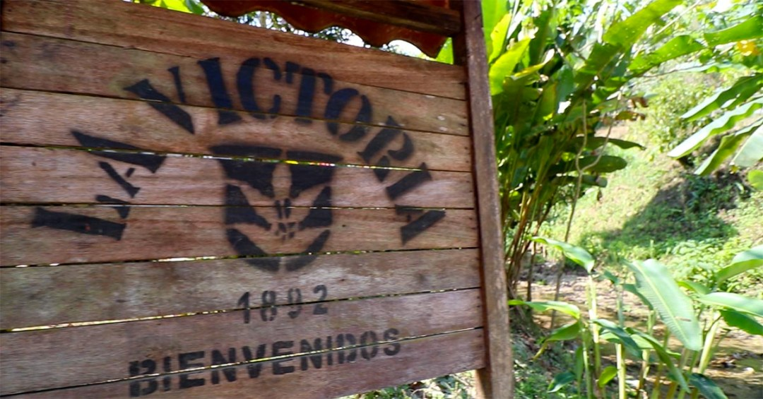How A 19th Century Coffee Farm Is More Successful Than Ever_2