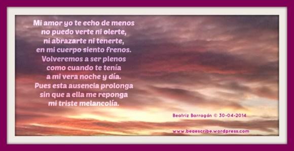 TE ECHO DE MENOS(2)