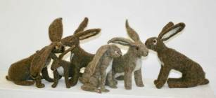 Hares-3
