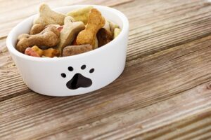 beagle dog food