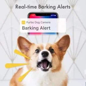 Furbo Barking Alerts
