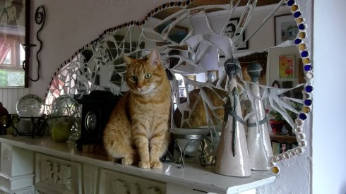 Bealtaine Cottage Missy Cat on the mantlepiece