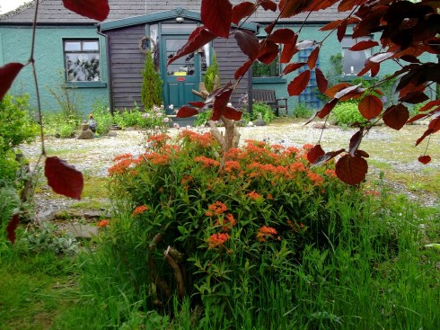 Bealtaine Cottage in early June 2013