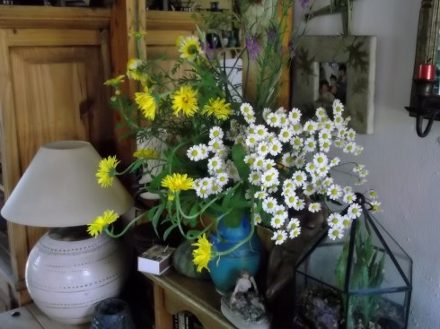 Flower display in Bealtaine Cottage