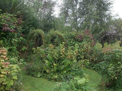 Autumn in the Permaculture Gardens of Bealtaine Cottage 026