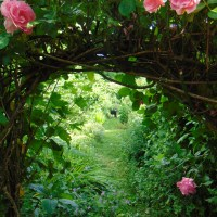 The Romance of Gardening...falling for Gaia