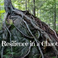 Building Resilience in a Chaotic World~Podcast