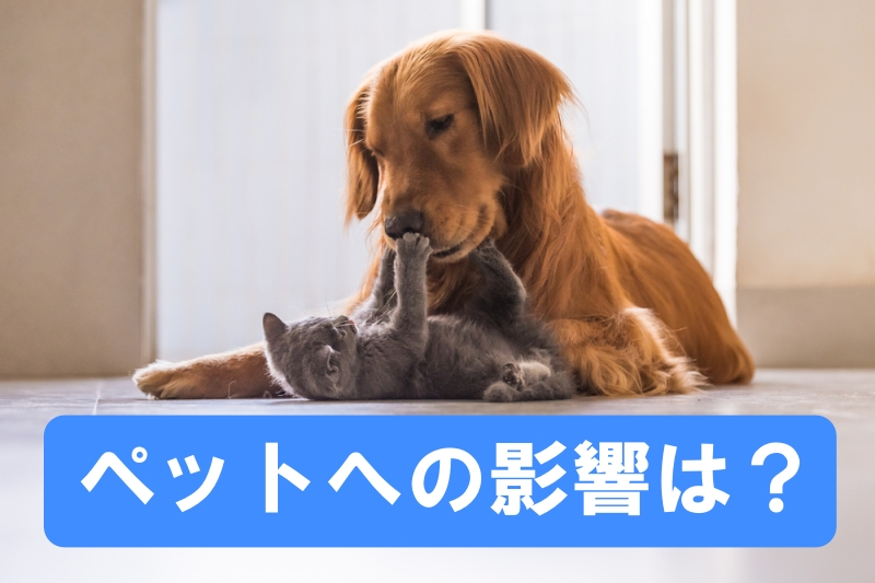 ペットへの影響