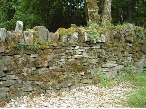 Mending Wall Analysis by Robert Frost