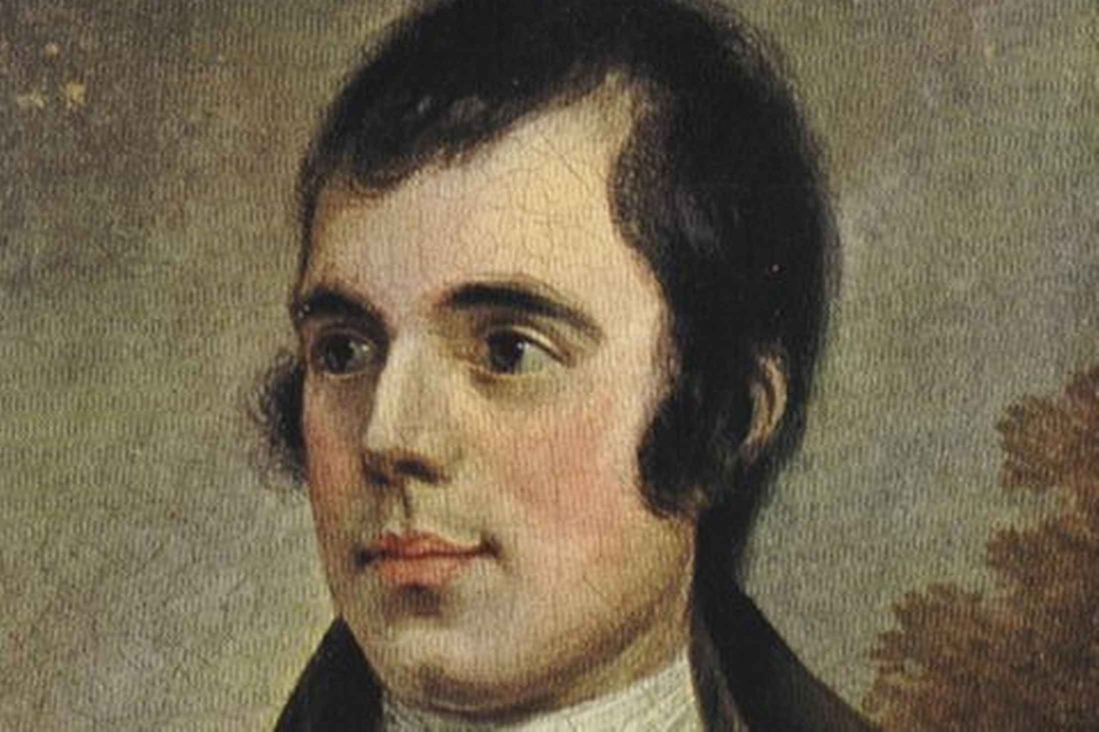 To a Louse Analysis by Robert Burns