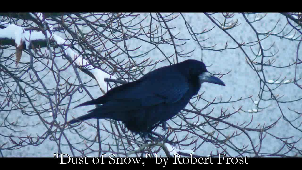 critical analysis of robert frosts, stopping by woods on a snowy evening essay Analysis of robert frost's stopping by woods on a snowy evening  robert  frost uses symbolism to show the correlation between the woods and village with .
