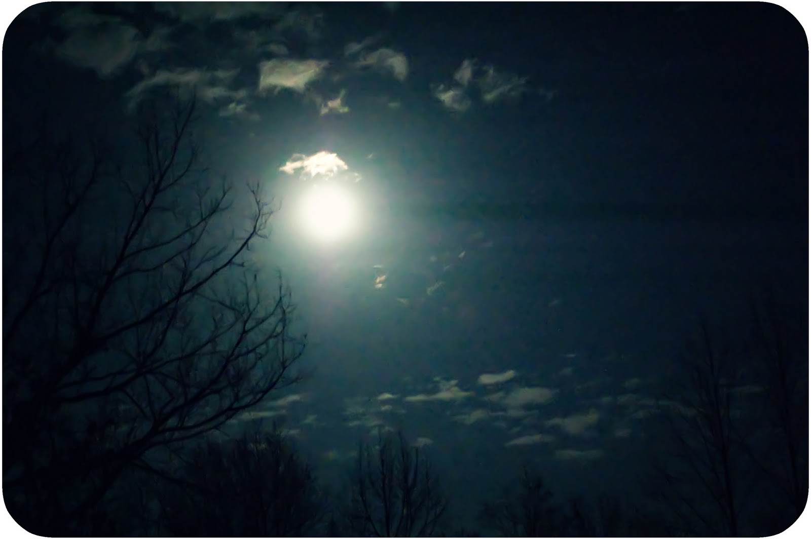The Moon and the Yew Tree Summary and Analysis by Sylvia Plath