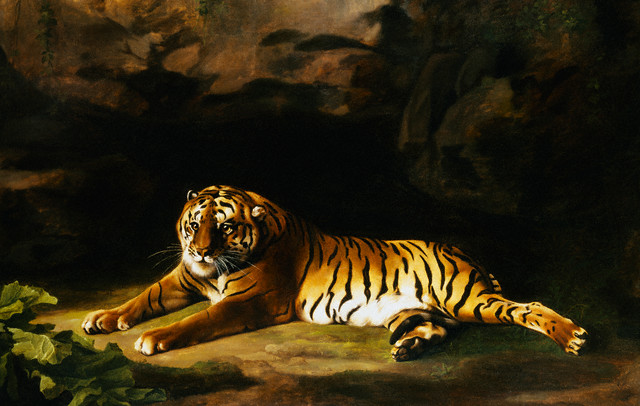 analysis of the tyger and the Themes and critical analysis the tyger is the sister poem to the lamb (from songs of innocence), a reflection of similar ideas from a different perspective.