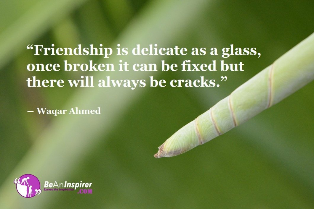 Friendship-is-delicate-as-a-glass-once-broken-it-can-be-fixed-but-there-will-always-be-cracks-Waqar-Ahmed-Top-100-Friendship-Quotes-Be-An-Inspirer