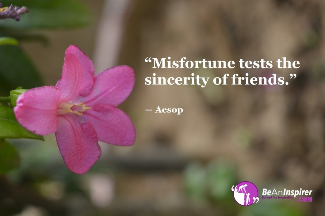 Misfortune-tests-the-sincerity-of-friends-Aesop-Top-100-Friendship-Quotes-Be-An-Inspirer