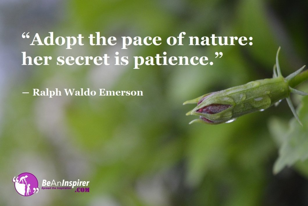 Adopt-the-pace-of-nature-her-secret-is-patience-Ralph-Waldo-Emerson-Nature-Quotes-Be-An-Inspirer