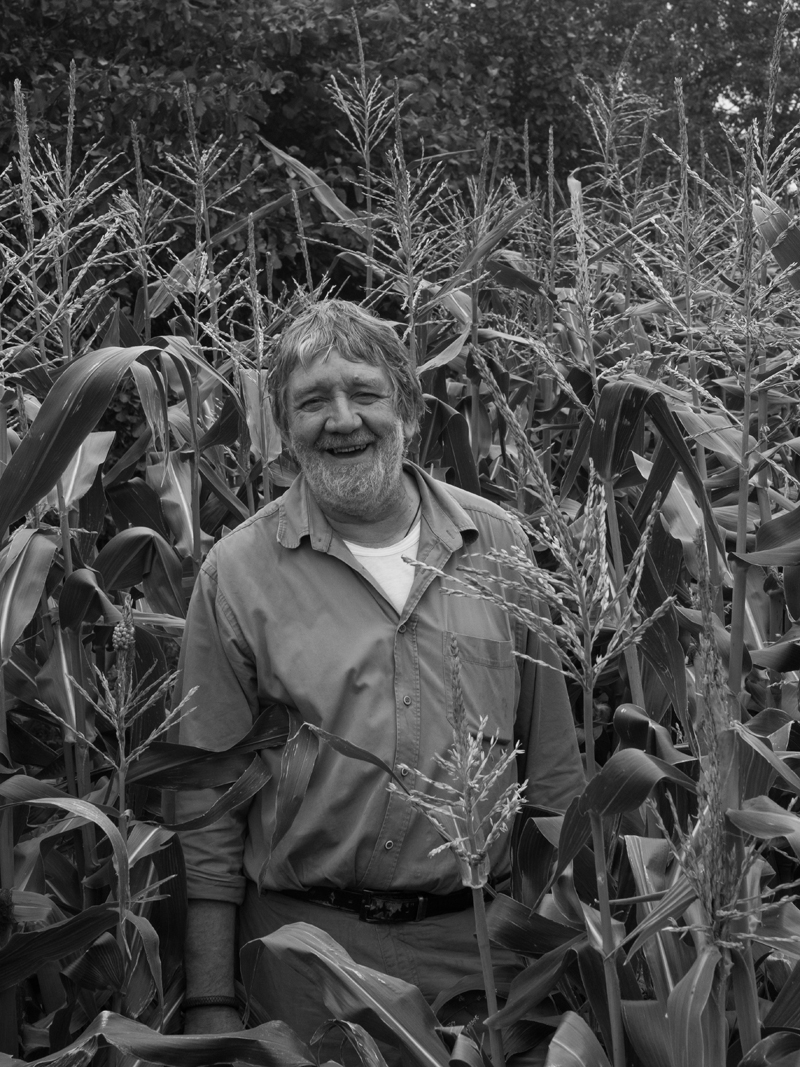 Alan Schofield in his corn field
