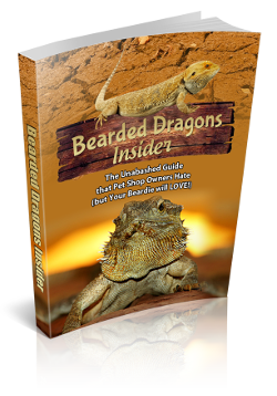 Bearded Dragons Care eBook
