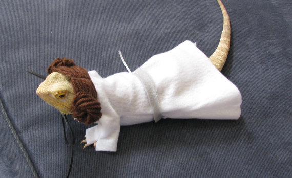 princess-leia-costume-for-bearded-dragons