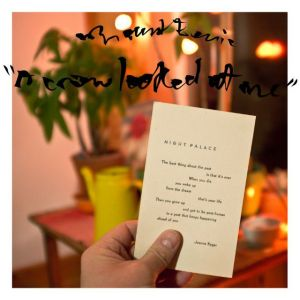 A Crow Looked at Me Mount Eerie Review