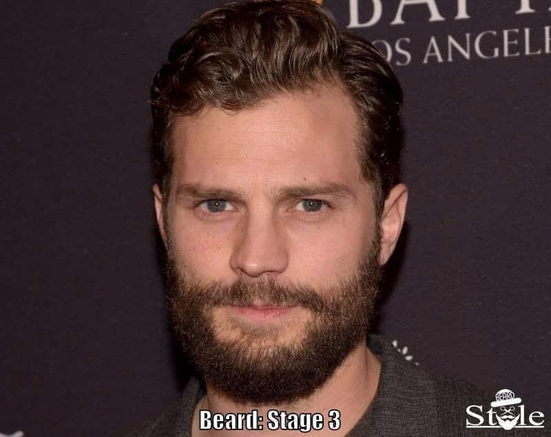 beard stage 3