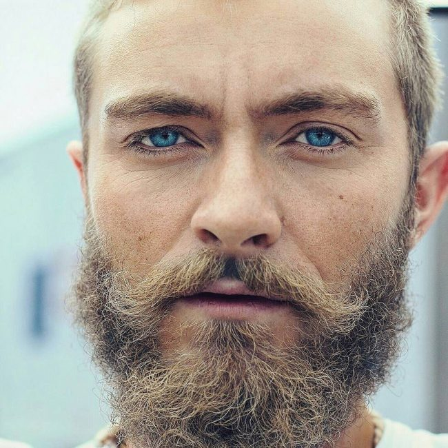 Big and Curly blonde beard style for men