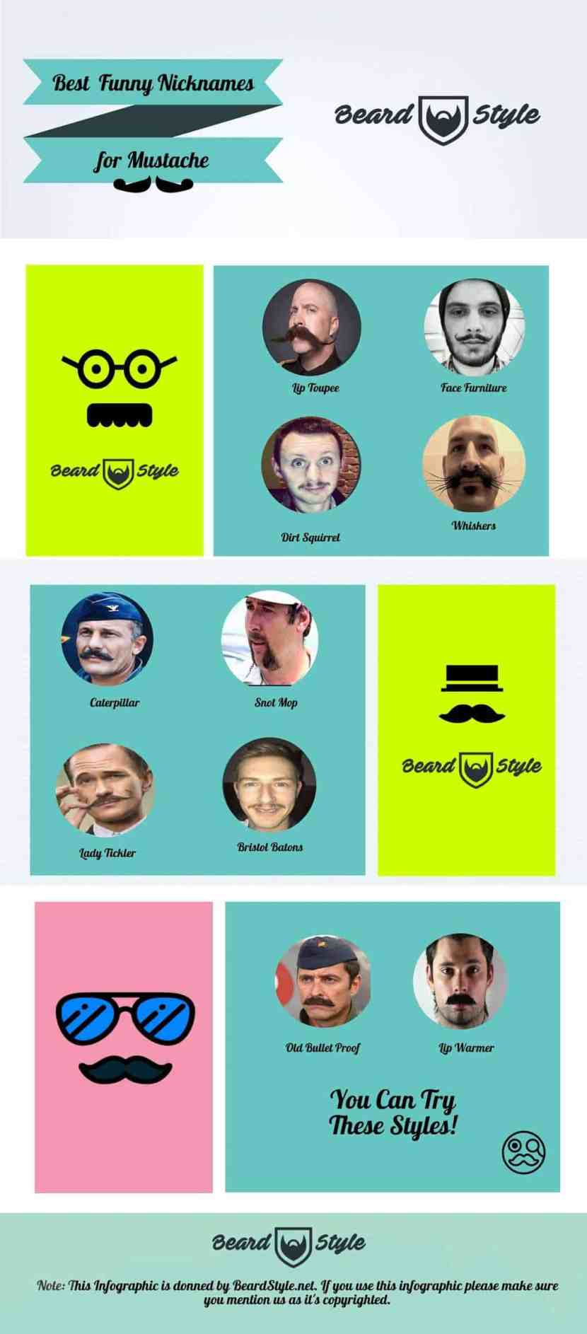 Funny Mustache Names infographic