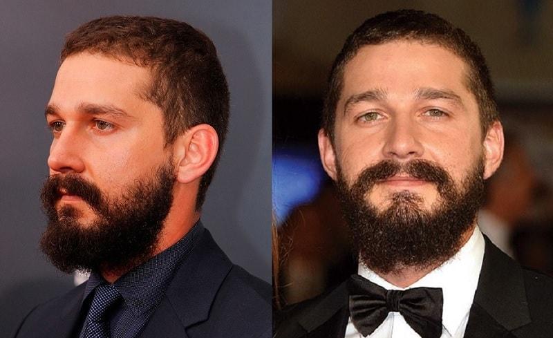 shia labeouf's thick beard