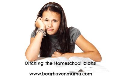 put-some-fun-back-into-homeschool