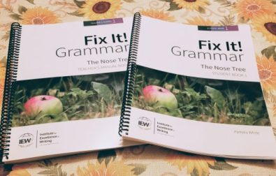 fix-it-grammar-by-iew-review