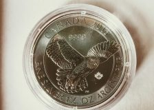 silver-canadian-snowy-owl-coin-review-from-gsi-exchange