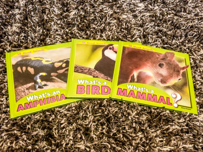 All About Animals - Set of 3 from Library and Educational Services LLC, just one of the many selections of hardbound non-fiction books for homeschool