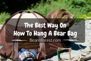 The Best Way On How To Hang A Bear Bag