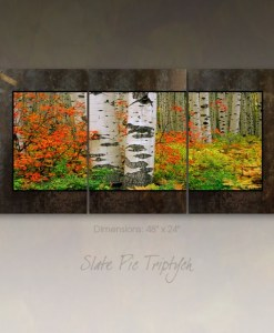3 Panel Picture on Slate - Red Bush & Aspen, McClure Pass, Colorado
