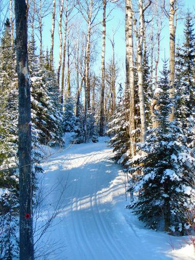 1909s-beaver-dam-trail