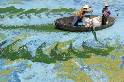 Painting looking, REAL POLLUTION - Chaohu lake, China - Be arttist Be art