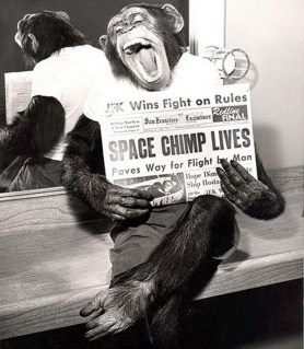 Space Chimp - Happy Life