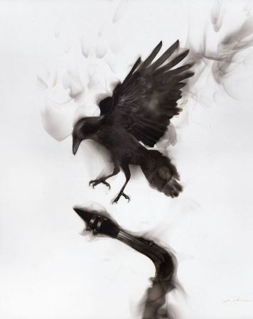 Fire made #Birds, when #Magic happens - by Spazuk - be artist be art magazine