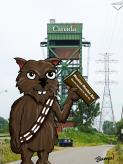Wombie Wookiee by Bearman Cartoons