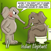 I is for Indian Elephant. Animal Alphabets Cartoon series by Bearman Cartoons