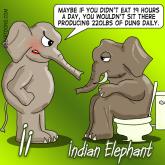 I is for Indian Elephant. Animal Alphabets Cartoon series by Bearman Cartoons