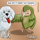 K-is-for-Kakapo-Animal-Alphabets-Bearman-Cartoons
