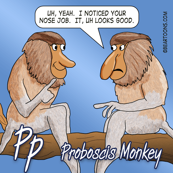P-is-for-Proboscis-Monkey-Animal-Alphabets-Bearman-Cartoons