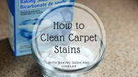 How To Clean Carpet Stains With Baking Soda And Vinegar ...