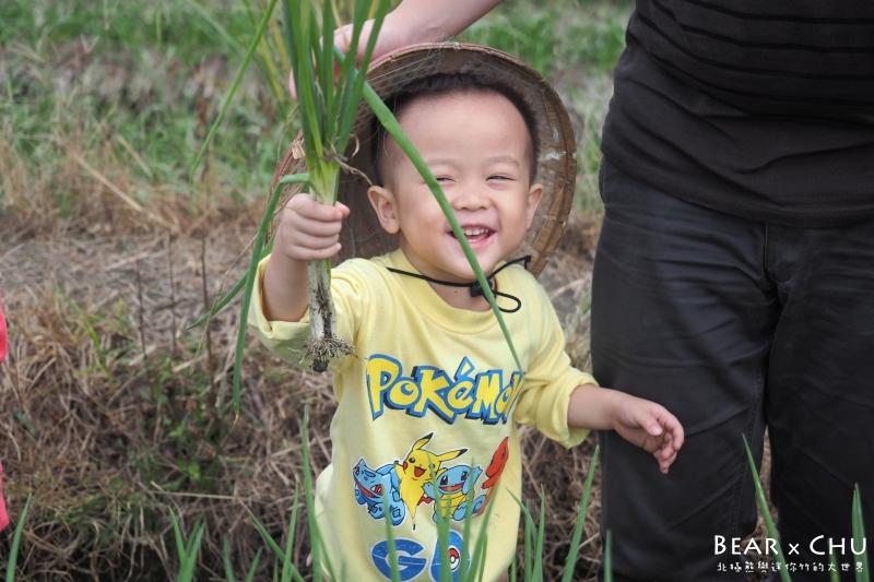 【親子旅遊推薦景點】宜蘭三星蔥仔寮體驗農場・體驗拔蔥、蔥油餅DIY