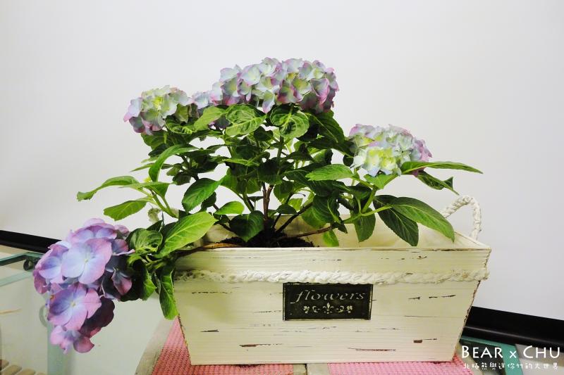 組合盆栽DIY紫陽花園慶好年_20110122-120158.JPG