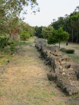 Archeological ruins in park