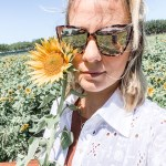 Sunflower Picking